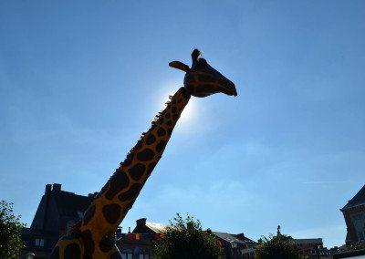 fdw16-sa-girafes-00002