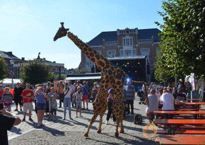 fdw16-sa-girafes-00006