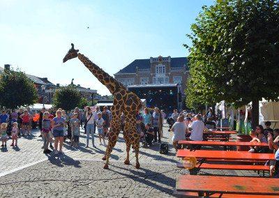 fdw16-sa-girafes-00007